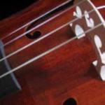 158700_cello_detail_3