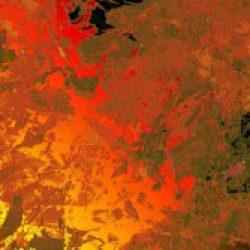 abstract-q-c-640-480-5