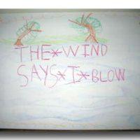 sarawind