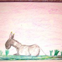serena_animals1