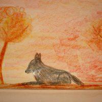 serena_animals3